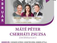 Máté Péter, Cserháti Zsuzsa emlékkoncert