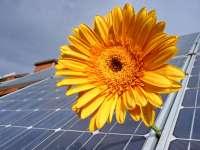 Fordulat a napelempiacon - Választható marad a szaldós elszámolás a támogatással épült rendszerekre