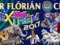 A Richter Flórián Cirkusz ÁLLATI EXTRÉM című előadása egy igazi extrém szórakozás az egész család számára, ahol a tradíció és az új világ találkozik egymással.